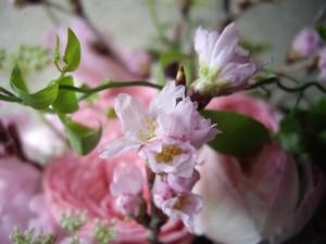 ☆雪の日の記念日に届けられたお花4☆